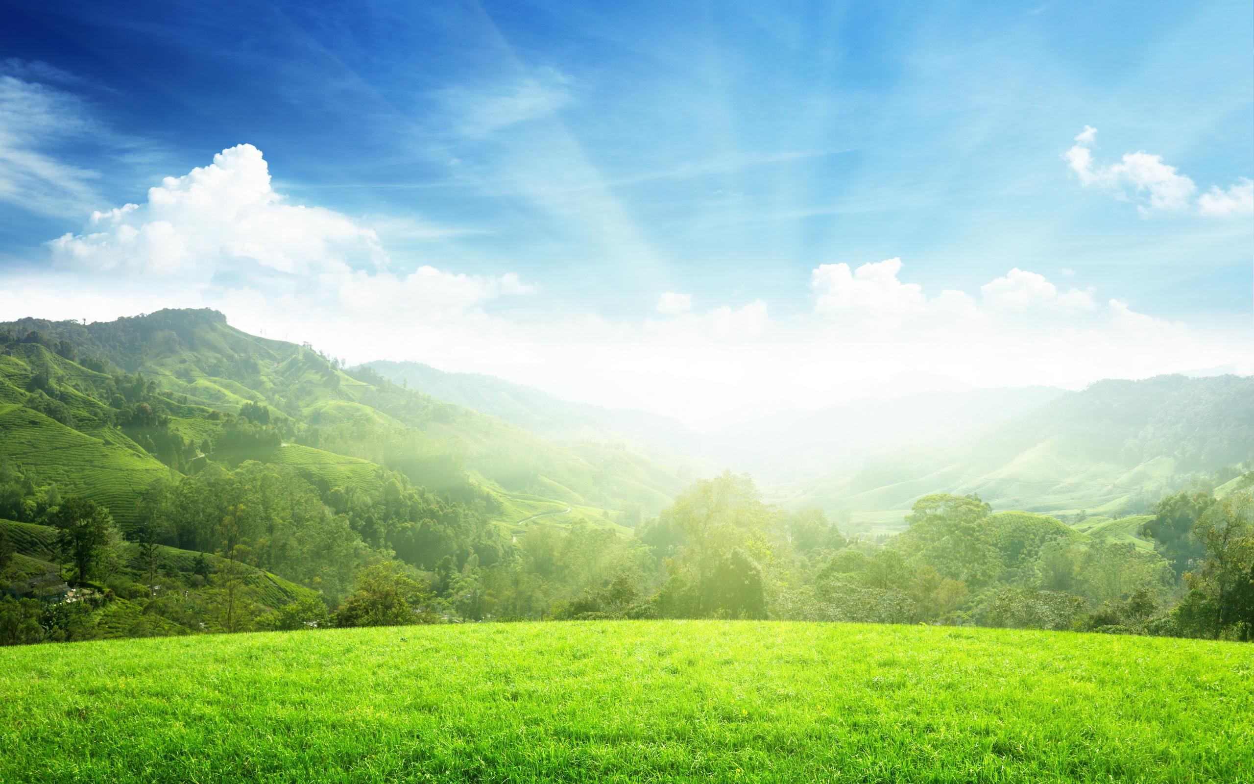 Картинки солнечной погоды
