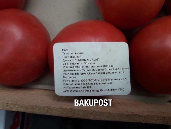 Выращивание помидоров в азербайджане 11