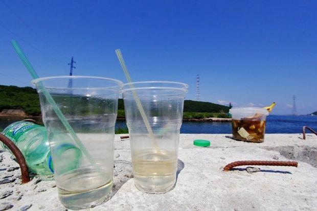 Azərbaycanda plastik qablaşdırma qadağan ediləcəkmi?