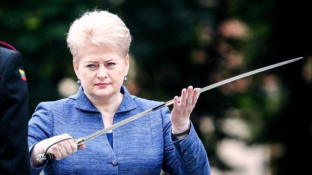 Litva prezidentinin səfəri təyyarə nasazlığı ucbatından baş tutmadı
