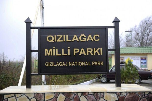 Qızılağac Milli Parkı haqqında Əsasnamə təsdiqləndi