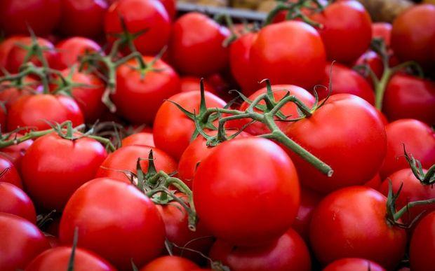 Rusiyadan qaytarılan Azərbaycan pomidorları təkrar ixrac oluna bilər