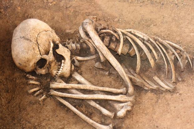 Alimlər ölünün parçalanmasını lentə aldı: