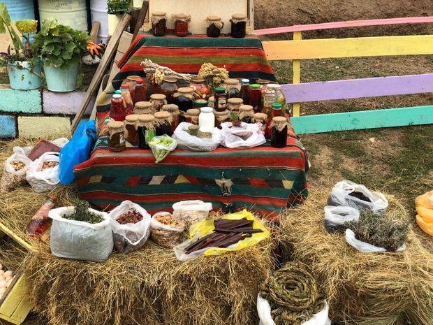 Soyuq şəhər kafesindən isti kənd evinə: Samovar çayı, göl qırağı... - REPORTAJ