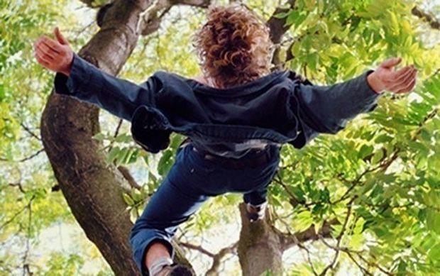 Qoz ağacından yıxılan Astara sakininin vəziyyəti ağırdır