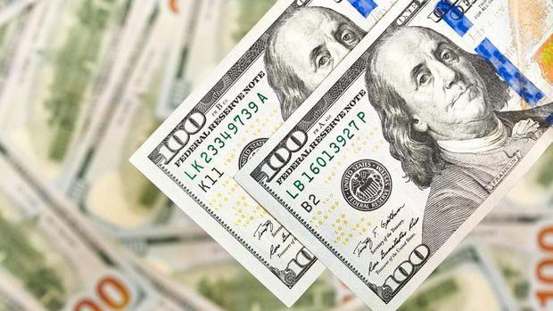 Analitiklər: Dollar dəyərdən düşəcək