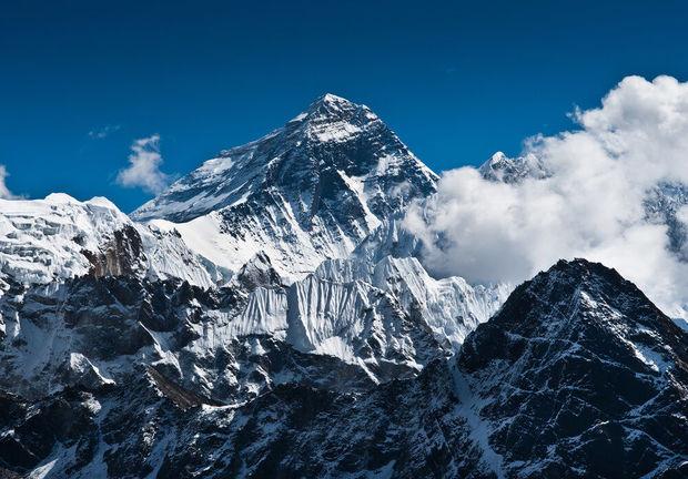 Dünyanın ən yüksək nöqtəsi meşəyə çevrilir